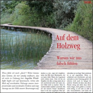 preview-download-auf-dem-holzweg